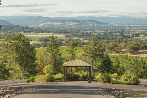 rogue valley view